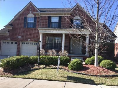 Novi Single Family Home For Sale: 29125 Eastman Trail