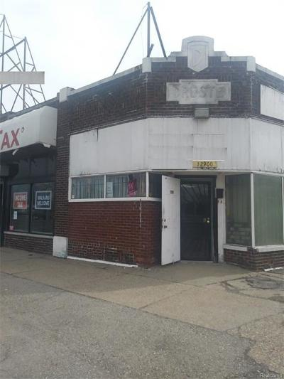 Commercial For Sale: 12900 Gratiot Avenue