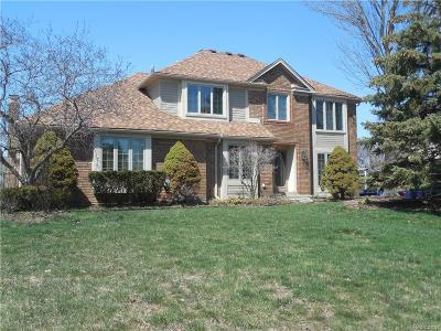 Farmington Hills Single Family Home For Sale: 39170 Plumbrook Drive