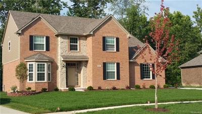 CANTON Single Family Home For Sale: 47463 Ellery Lane