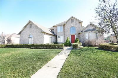Macomb Twp MI Single Family Home For Sale: $399,900