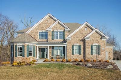 Northville Twp Single Family Home For Sale: 50698 Tamarack Trail