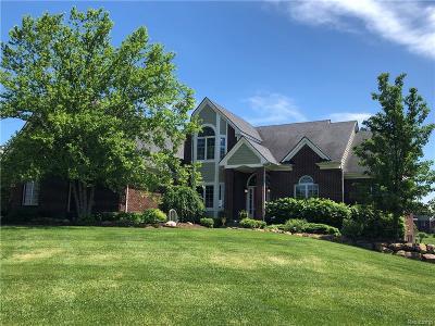 Novi Single Family Home For Sale: 22192 Hillside Drive