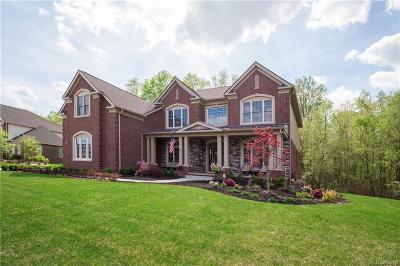 Northville Twp Single Family Home For Sale: 17475 Briar Ridge Lane