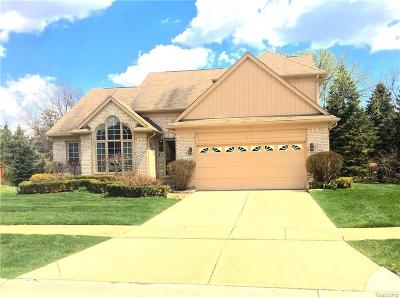 Rochester Hills Single Family Home For Sale: 2005 Baron