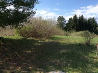 Oakland Twp Residential Lots & Land For Sale: Parcel I Flumerfelt