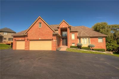 West Bloomfield, West Bloomfield Twp Single Family Home For Sale: 6456 Willow Rd