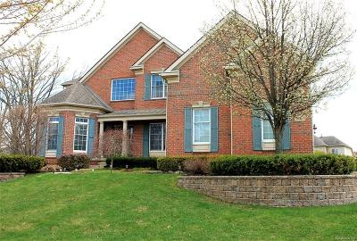 Northville Twp Single Family Home For Sale: 50463 Rose Terrace