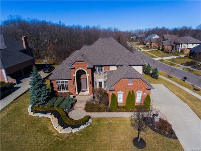 Novi Single Family Home For Sale: 26468 Mandalay Court