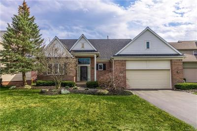 Commerce Twp Single Family Home For Sale: 743 Cross Creek Drive