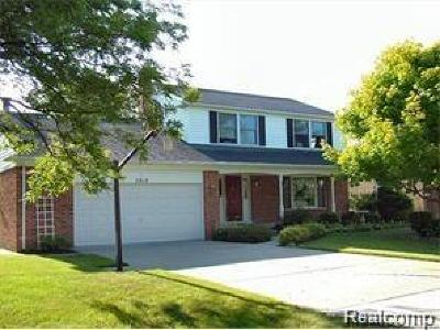 Rochester, Rochester Hills Single Family Home For Sale: 3919 Orchard View Avenue