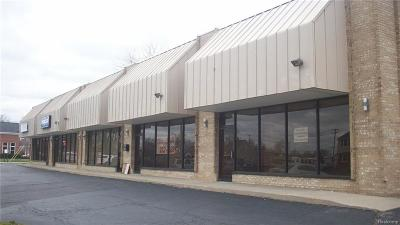 Southgate MI Commercial For Sale: $395,000