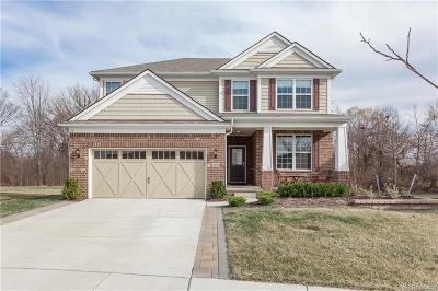 CANTON Single Family Home For Sale: 5826 Braemore Drive