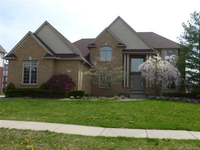 Rochester Hills Single Family Home For Sale: 1329 Clear Creek Drive