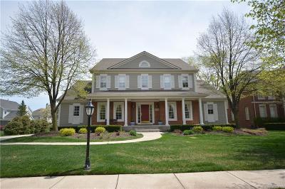 Novi Single Family Home For Sale: 22798 Summer Lane