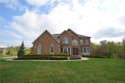 Novi Single Family Home For Sale: 25770 Shoreline Drive