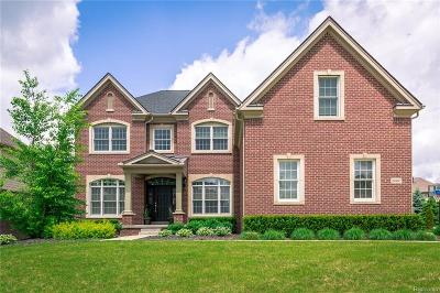 Novi Single Family Home For Sale: 24887 Overlook Trail