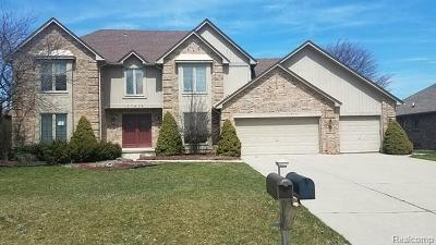 Farmington Hills Single Family Home For Sale: 37976 River Bend