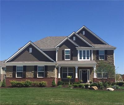 Lyon Twp Single Family Home For Sale: 56944 Rockway Court