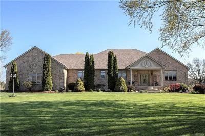 Huron Twp Single Family Home For Sale: 36695 Elizabeth Lane