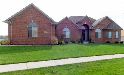 Huron Twp Single Family Home For Sale: 28999 Liparoto Boulevard