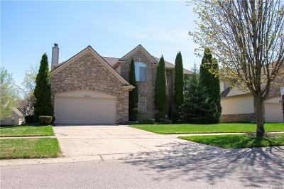 Farmington, Farmington Hills Single Family Home For Sale: 29237 Stillwater
