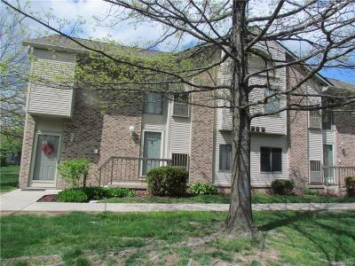 Canton, Canton Twp Condo/Townhouse For Sale: 42553 Lilley Pointe Drive