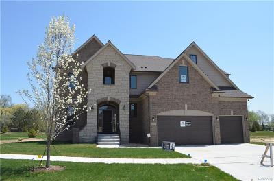 Washington Twp Single Family Home For Sale: 60752 Onyx Court