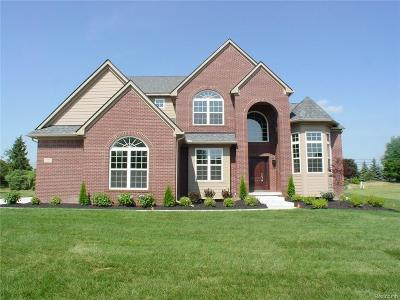 Canton Single Family Home For Sale: 8193 N Pointe Court