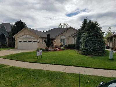 Macomb Twp Single Family Home For Sale: 46103 Butte Drive