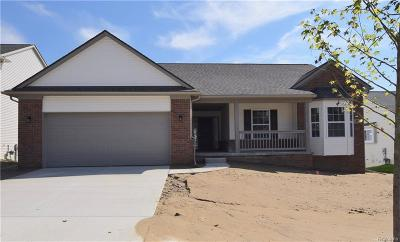 White Lake, White Lake Twp Single Family Home For Sale: 307 Dakota Lane