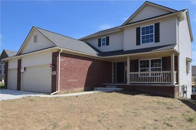 White Lake Single Family Home For Sale: 295 Dakota Lane