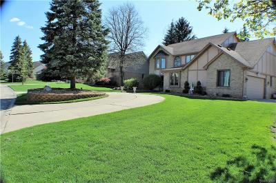 Farmington Hills Single Family Home For Sale: 31073 Evergreen Court