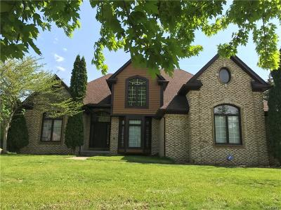 STERLING HEIGHTS Single Family Home For Sale: 2432 Burningbush Drive