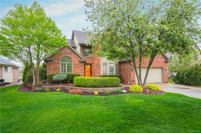 Macomb Twp Single Family Home For Sale: 49875 Bufflehead Lane