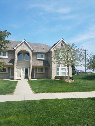 STERLING HEIGHTS Condo/Townhouse For Sale: 15149 Northpointe Drive