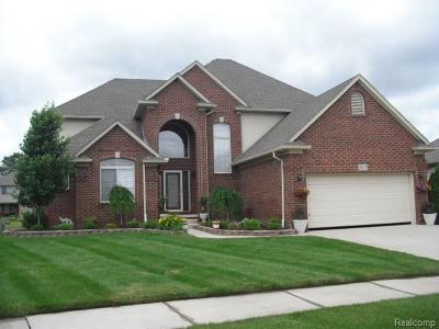 MACOMB Single Family Home For Sale: 50373 Chief Drive