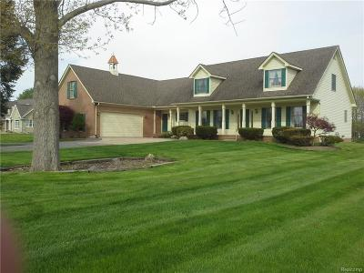 East China Twp Single Family Home For Sale: 2134 Belle River Rd.