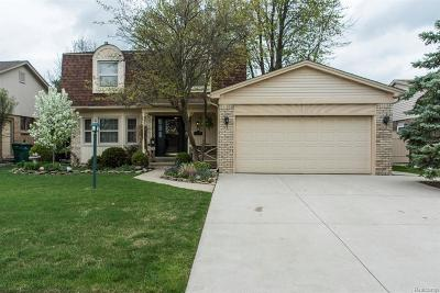 MACOMB Single Family Home For Sale: 16823 White Plains Drive