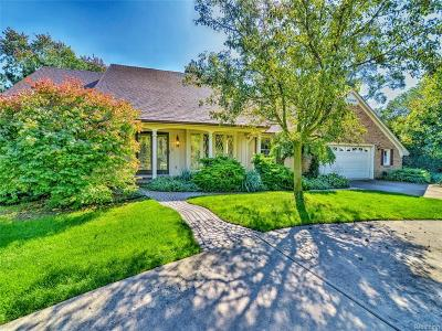 Clinton Twp Single Family Home For Sale: 37370 Moravian Drive