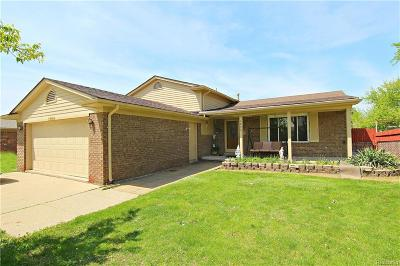 STERLING HEIGHTS Single Family Home For Sale: 3053 Charity Drive