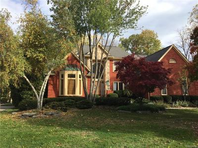 Rochester Hills Single Family Home For Sale: 3656 Cedar Shake Drive