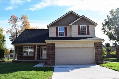 Auburn Hills Single Family Home For Sale: 1495 Vinewood Street