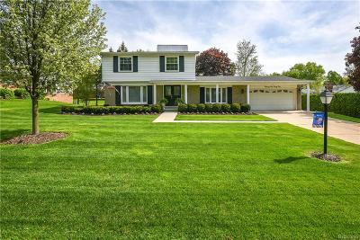 BLOOMFIELD Single Family Home For Sale: 2565 Alveston Drive