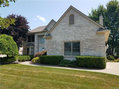 Shelby Twp Single Family Home For Sale: 49634 Sandra Drive