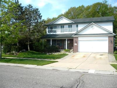Brownstown, Brownstown Twp Single Family Home For Sale: 17352 Pennsylvania Heights Drive