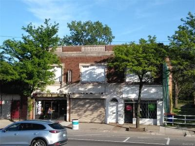 Commercial For Sale: 14318 E Jefferson Avenue
