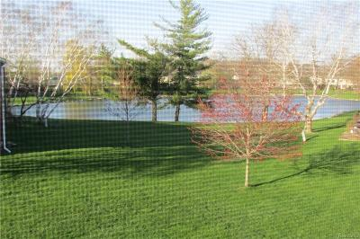 Superior, Superior Twp Condo/Townhouse For Sale: 8333 Lakeview Court