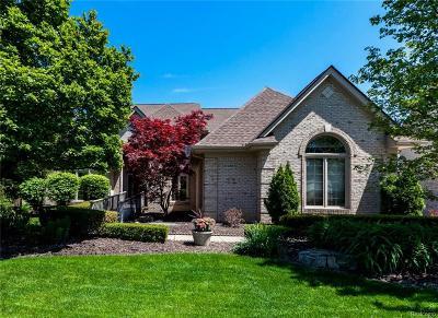 Novi MI Single Family Home For Sale: $549,000