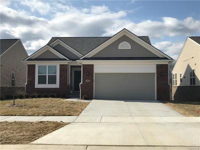 Lake Orion, Orion Twp, Orion Single Family Home For Sale: 1191 Lark